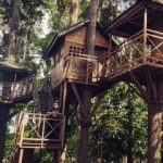 Hutan Kota Langsa, Tempat Wisata Sekaligus Paru-Paru Dunia Kota Langsa