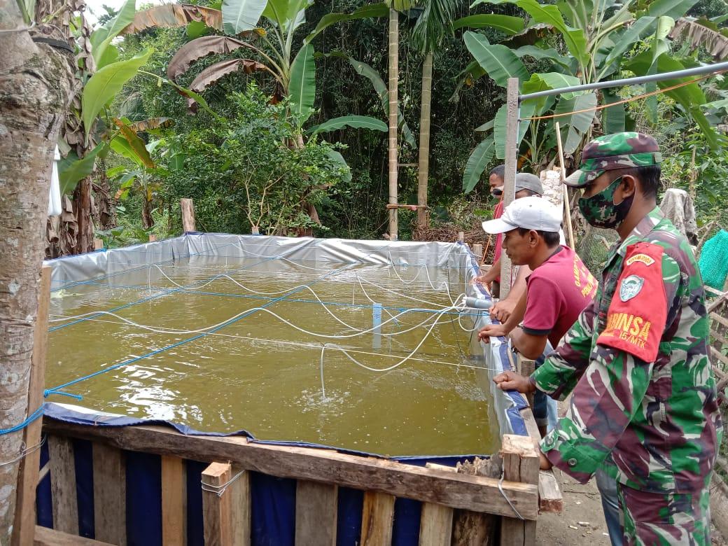 Babinsa Koramil 15/Matangkuli Bantu Warga Budidaya Ikan Nila Kepada Warga Binaannya.